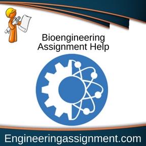 Bioengineering Assignment Help