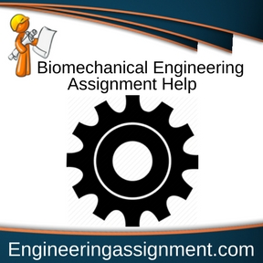 Biomechanical Engineering Assignment Help