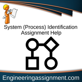 System (Process) Identification Assignment Help